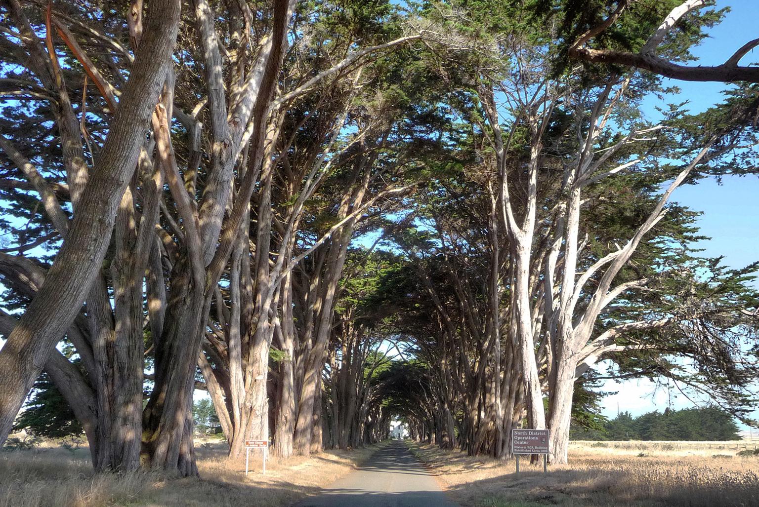 Point Reyes Marconi Station Cultural Landscape Report