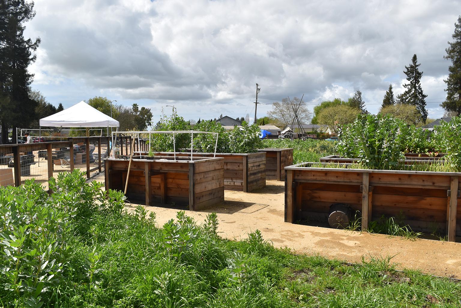Bayer Park and Garden